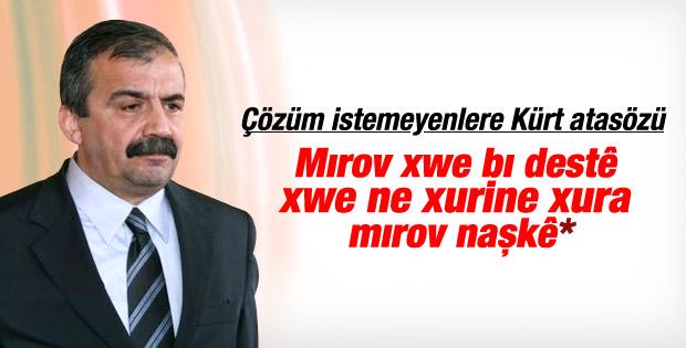 Sırrı Süreyya süreci eleştirenlere Kürtçe seslendi