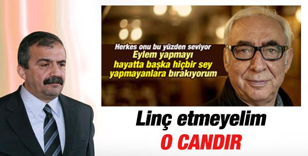 Sırrı Süreyya Önder, Şener Şen'e destek verdi
