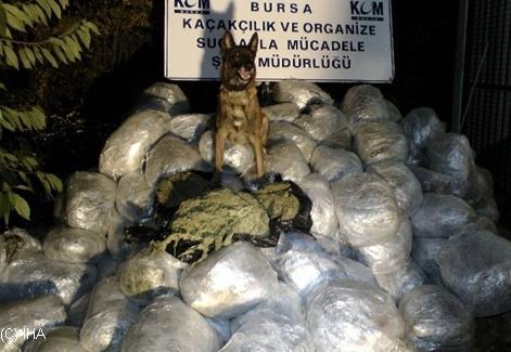 Bursa'da yapılan operasyonda 1 ton esrar ele geçirildi