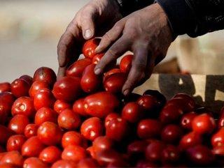 Rusya'nın almadığı sebze meyve yüzde 40 zamlandı