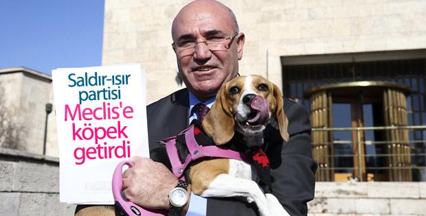 CHP'li Mahmut Tanal köpeğiyle basın toplantısı yaptı