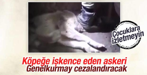 Genelkurmay'dan köpeğe işkence eden asker açıklaması