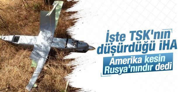 Reuters: Amerika'ya göre düşürülen İHA Rusya'nın