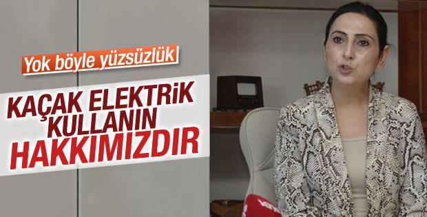 HDP'nin yavru partisi: Herkes elektriği kaçak kullansın