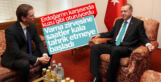 Avusturya Başbakanı Kurz: Türkiye'nin AB'de yeri yok