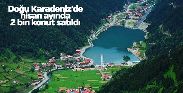 Doğu Karadeniz'de konut satışı