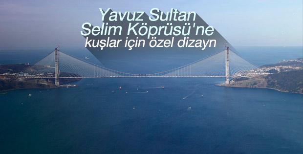 Yavuz Sultan Selim Köprüsü'de kuş göçüne özel çalışma