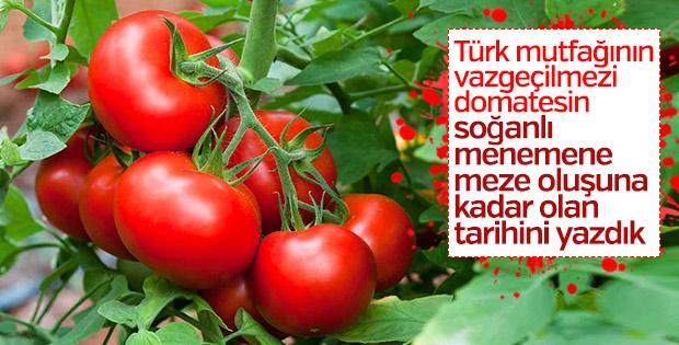 Domates Türk mutfağına ne zaman girdi