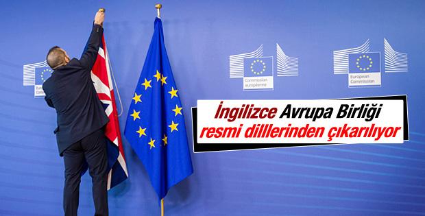 Hübner: İngilizce, AB'nin resmi dillerinden çıkarılacak