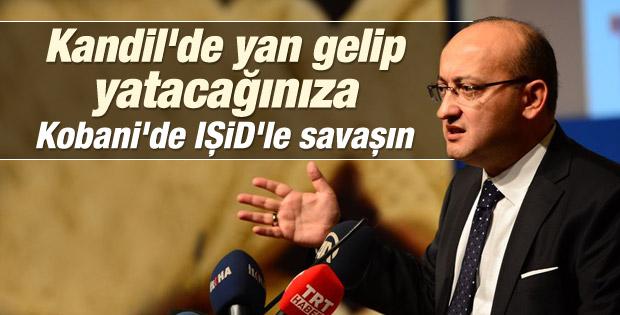 Yalçın Akdoğan: Gücün yetiyorsa git IŞİD'le mücadele et