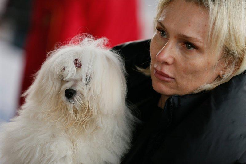 Köpeklerin en kötü ırkları. değerlendirme