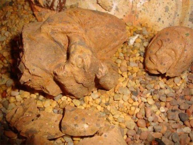 Image result for çin de türk piramitleri