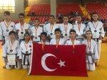 Yıldız judoculardan Kuzey Makedonya'da 12 madalya