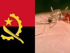 Angola'da 5 bin 500'den fazla kişi sıtmadan öldü