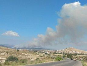 Foça'da orman yangını
