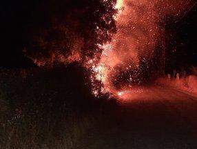 Aydın'da 2 farklı bölgede yangın