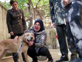 Şehit onbaşının köpeği ailesine sahiplendirildi