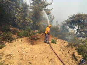 Bilecik'teki orman yangını kontrol altına alındı