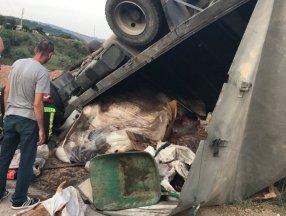 Kocaeli'de kurban derisi yüklü kamyon devrildi