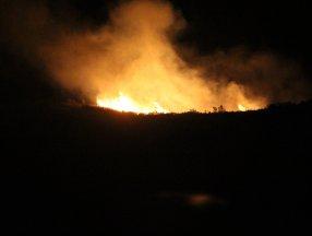 Muğla'da 10 hektarlık alanda yangın çıktı