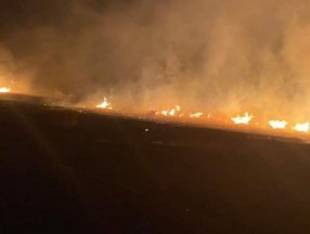 İstanbul'da tarla yangını