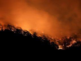 Orman yangını felaketinde son durum