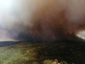 Yangın ekolojisi uzmanı, Manavgat yangınını değerlendirdi