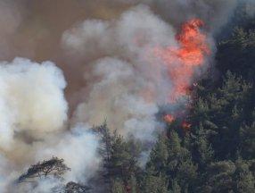 Orman yangınını söndürmek kadar hayati olan işlem: Soğutma