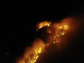 Muş'ta yangın çıktı