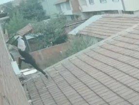 Bursa'da akrabasının evine balkondan girip eşini darbetti