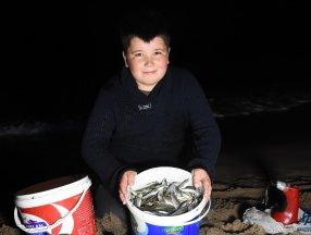 Bartın'da tonlarca balık kıyıya vurdu