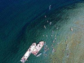 Van Gölü'ndeki festival ortaya güzel görüntüler çıkardı